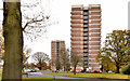 J3581 : Woodland House and Beechwood House, Rushpark, Newtownabbey by Albert Bridge