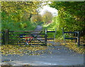 SJ6887 : Trans Pennine Trail at Lynnhay Lane crossing by Anthony O'Neil