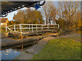 SJ8997 : Yew Tree Swing Bridge, Droylsden by David Dixon