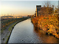 SJ8798 : Ashton Canal, Clayton by David Dixon