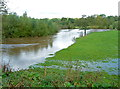 SJ7867 : Flood plain of the River Dane east of Holmes Chapel by Anthony O'Neil