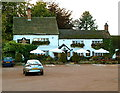 SJ8067 : The Swettenham Arms near Holmes Chapel by Anthony O'Neil
