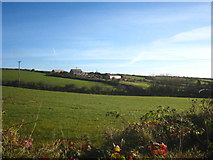 SW6937 : Field at Lancarrow by Rod Allday