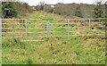 J4769 : Old railway, Ballyhenry Minor, Comber by Albert Bridge