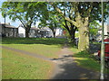 SD5192 : A  patch  of  green  in  Kendal by Martin Dawes