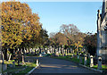 TQ3272 : Various monuments, West Norwood Cemetery (22) by Stephen Richards