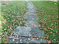 SU8011 : St Mary church path made of old gravestones by Dave Spicer