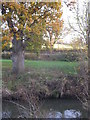 TQ7724 : Oak, River Rother and Railway by David Anstiss