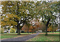 TQ3173 : Brockwell Park (7) by Stephen Richards