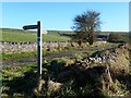 SK1177 : Pennine Bridleway signpost by Graham Hogg