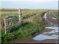 TL2290 : Farm track over Whittlesey Mere by Richard Humphrey