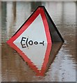 SO8540 : Overwhelmed Flood sign, Upton-upon-Severn : Week 48
