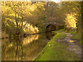 SJ9590 : Peak Forest Canal by David Dixon