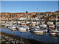 NZ9010 : Whitby Marina : Week 49
