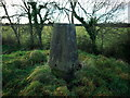 J1779 : Killead Triangulation Pillar by Rossographer