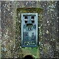J1779 : Flush Bracket, Killead Triangulation Pillar by Rossographer