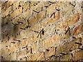 TL4953 : Garden wall, Wandlebury Country Park by David P Howard