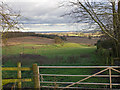 SP0555 : Fields near Ridgeway Farm by David P Howard