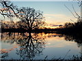 SO8328 : Flooded Tirley marsh, sunrise, 1 by Jonathan Billinger