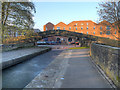 SJ9398 : Dukinfield Aqueduct, Towpath Bridge by David Dixon