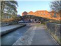SJ9398 : Dukinfield Aqueduct, Towpath Bridge by David Dixon