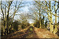 SO5826 : Old railway at Backney by John Winder