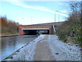 SJ9197 : Ashton Canal, Motorway Bridge at Audenshaw by David Dixon