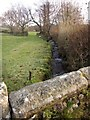 SX5176 : Stream near Langsford by Derek Harper