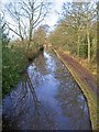 SP1473 : View NW from bridge 23, Stratford-upon-Avon Canal by David P Howard
