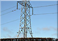 J2454 : Pylons and power lines, Edentrillick near Dromore (2) by Albert Bridge