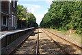 TR0033 : Marsh Link Line, Hamstreet by N Chadwick