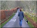 NH6454 : Midday dog walk to Balnakyle by Julian Paren