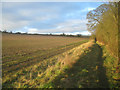 SU5738 : Wayfarer's Walk near Brown Candover by Scriniary