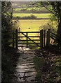 NZ8607 : Gate on Esk Valley Walk by Derek Harper