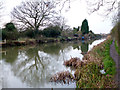 TL8607 : Chelmer &amp; Blackwater Navigation by terry joyce