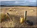 NT6480 : Coastal East Lothian : The North-West Tip Of Spike Island, Belhaven Bay : Week 1