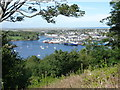 NB4232 : Stornoway: a view over the town and harbour by Chris Downer