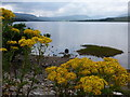 NN3143 : Loch Tulla: view from the A82 by Chris Downer