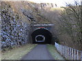 SK1273 : Chee Tor Tunnels on the Monsal Trail by Colin Park