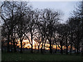 TQ2975 : Winter afternoon on Clapham Common by Stephen Craven