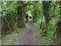 SP5014 : Oxford Green Belt Way by Shaun Ferguson