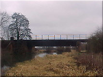 SU6971 : Railway Bridge by Tim Glover