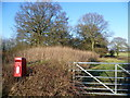 TQ5962 : Post box on Hatham Green Lane by Ian Yarham