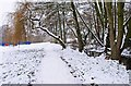 SO8377 : Snow covered footpath in Springfield Park, Kidderminster by P L Chadwick