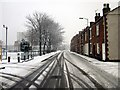 SJ4066 : St Ann Street, Newtown, Chester by Jeff Buck