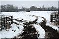SP7330 : Open gate to cattle field by Philip Jeffrey