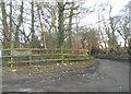 TQ4163 : The entrance to Fox Hill Farm on Jackass Lane by David Howard