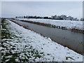 TL4288 : Sixteen Foot Drain near Mount Pleasant Farm by Richard Humphrey