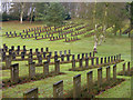 SJ9815 : Cannock Chase German war cemetery by Trevor Littlewood