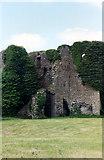 M7274 : Ballintubber Castle by Jo Turner